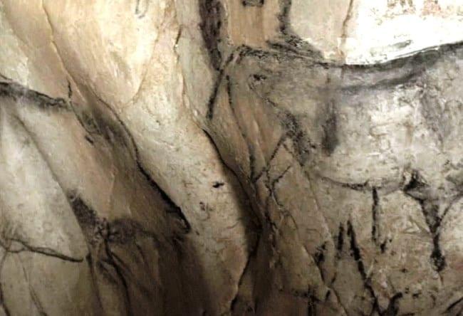 Пещера Шове возрастом более тридцати тысяч лет 4