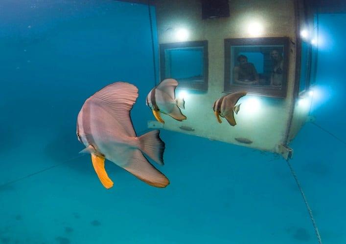 Подводный отель 4