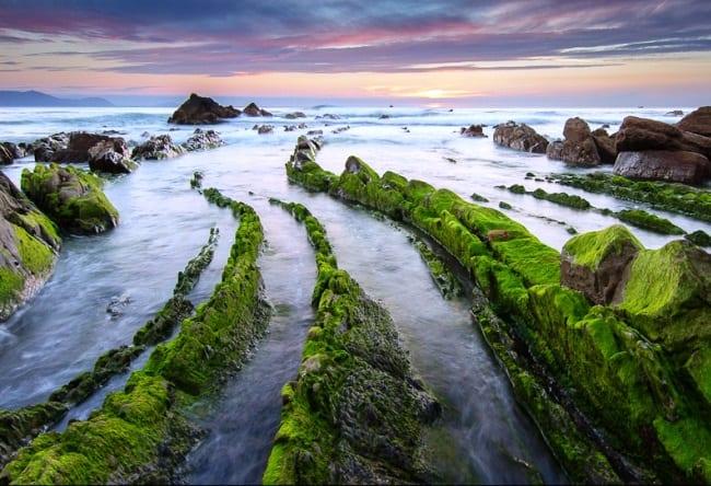 Хребет дракона у берегов Баррика 4