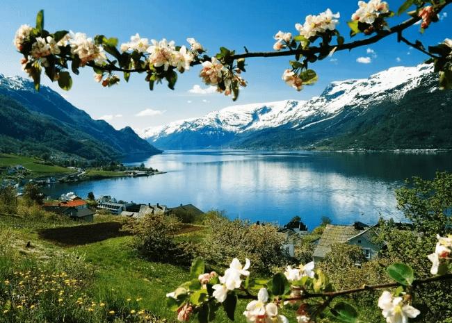 Визитная карточка Норвегии