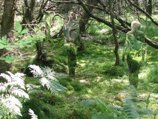 Призраки Шотландского леса