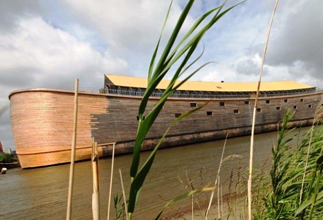 Ноев ковчег в Нидерландах 3
