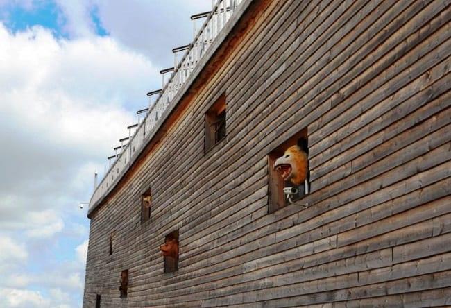 Ноев ковчег в Нидерландах 4
