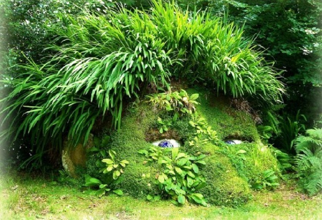 Gardens of Heligan in Cornwall 2