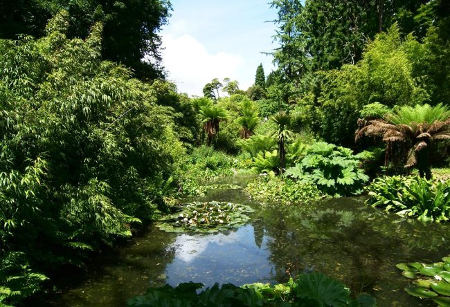 Gardens of Heligan in Cornwall 4
