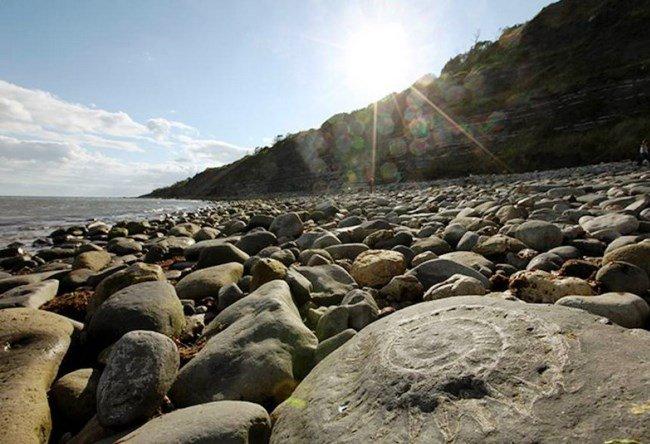 Ammonite Beach near Lyme Regis 2