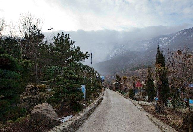 Yalta Zoo Tale 4