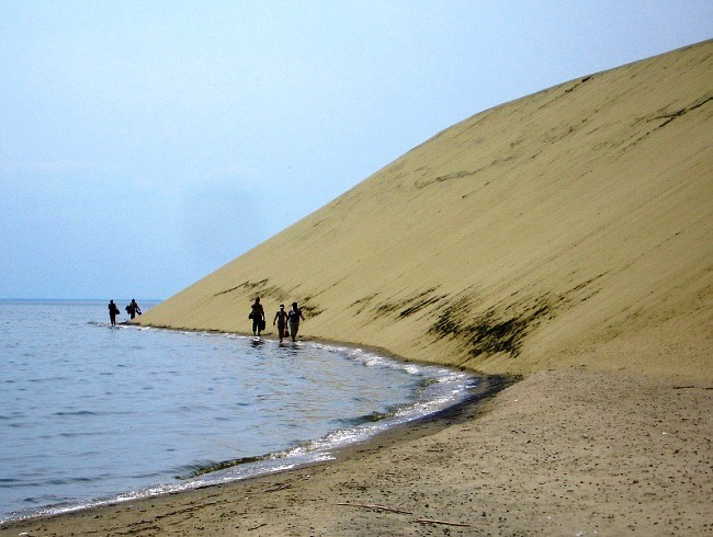 Amazing nature of the Curonian Spit 5