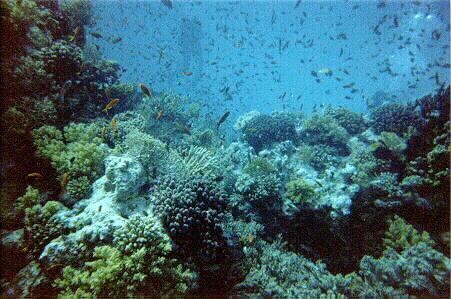 Hurghada Egypt 6