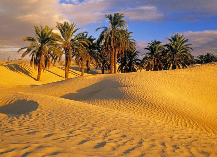 Самая большая пустыня в мире 4