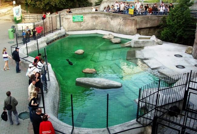 Самый старый зоопарк России 4