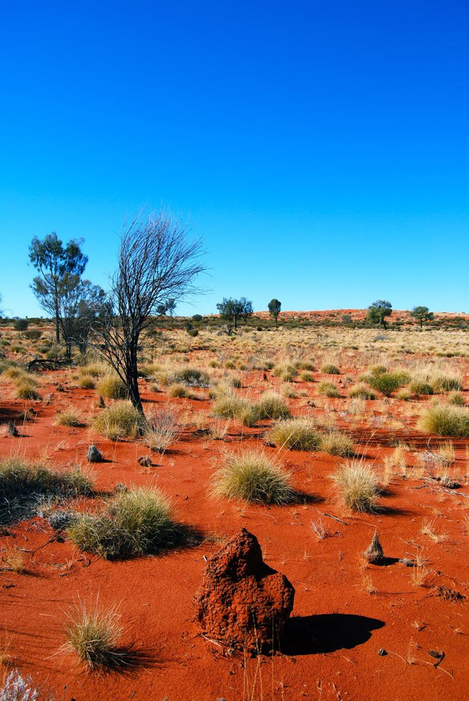 Great Victoria Desert 1