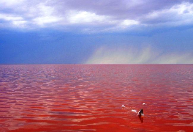 Самое соленое озеро в России 2
