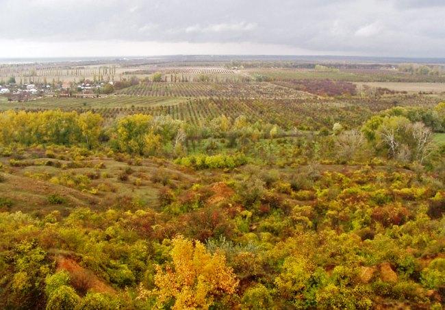 Мыс Лукулл Усть-Альминское городище 5