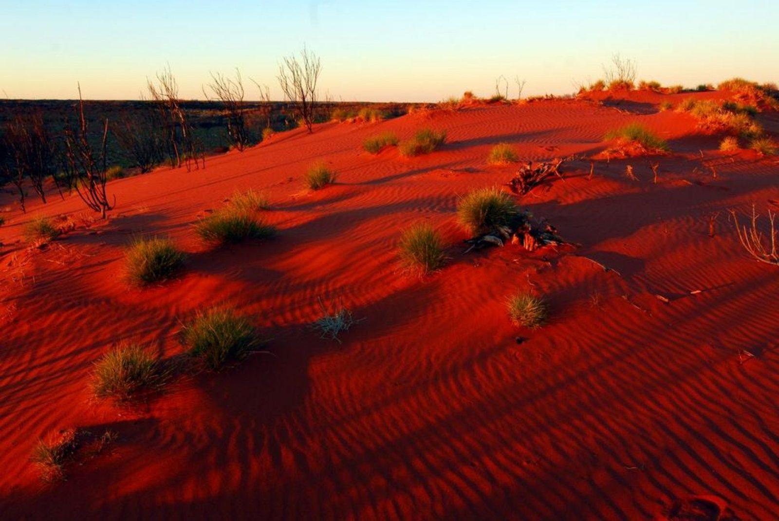 Пустыня в дубай купить дом в шри ланке
