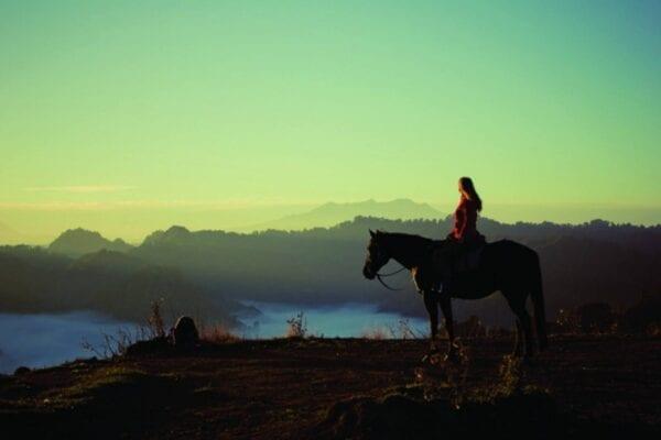 Новая Зеландия: 5 мест, которые вы должны включить в свой маршрут на Северном острове