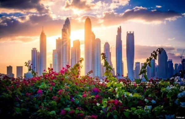Какие есть достопримечательности в Дубае