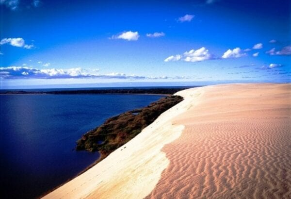 Amazing nature of the Curonian Spit