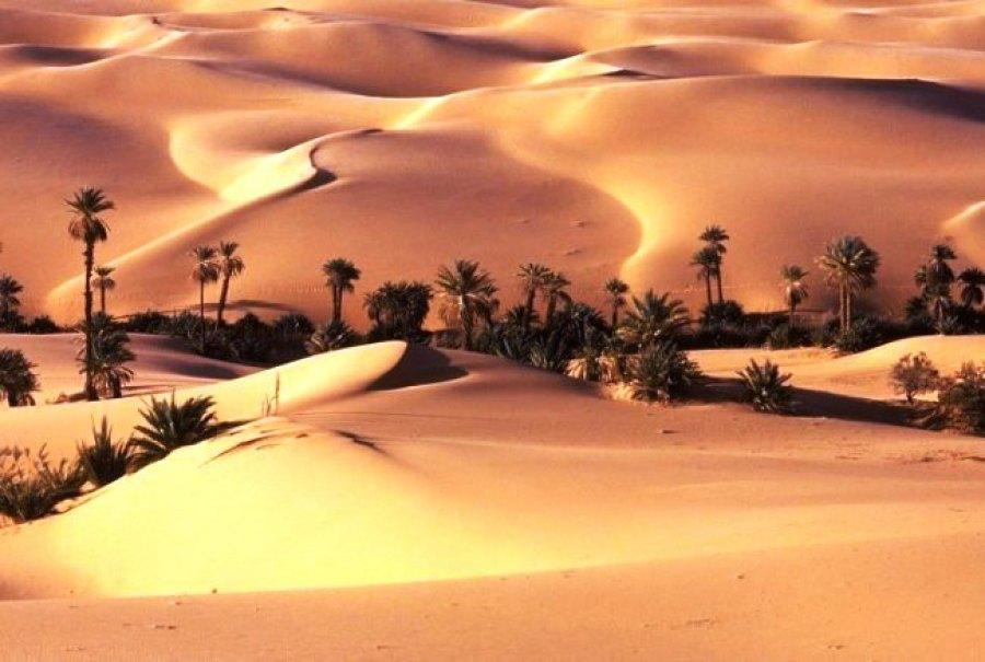 сколько занимает пустыня в австралии
