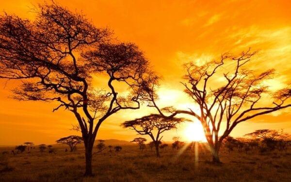 ТОП-10 африканских направлений для туристов