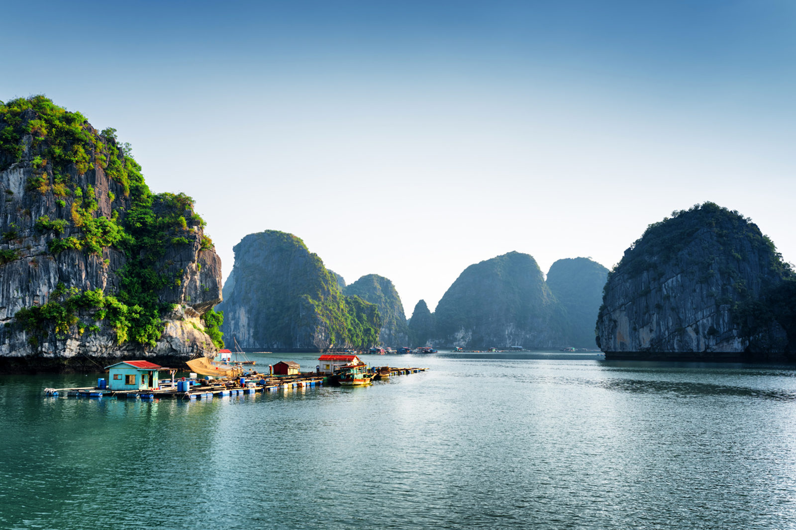 vietnam_tropics