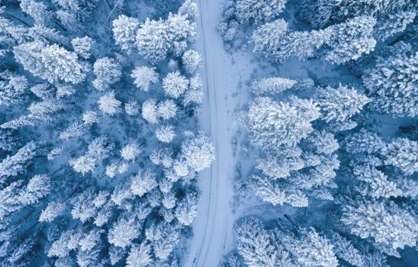 Куда поехать зимой: рекомендации при выборе отдыха