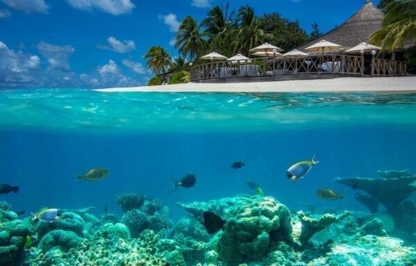 Юго-Восточная Азия, Мальдивы: отель Shangri-La's Villingili