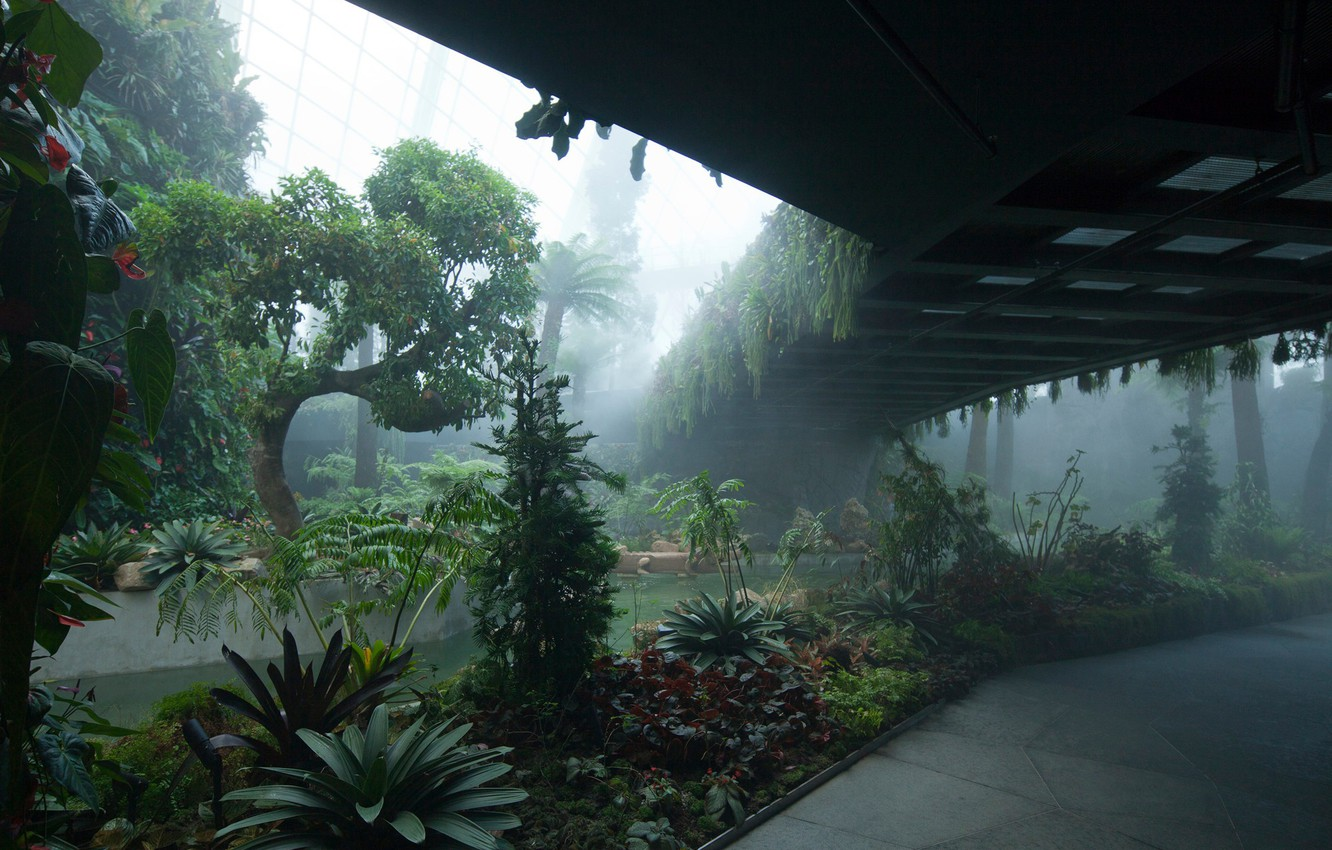 cloud-forest-gardens-by-the-bay-singapore-singapur-botaniche