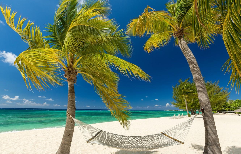 grand-cayman-ostrov-tropiki-more-poberezhe-pliazh-pesok-palm