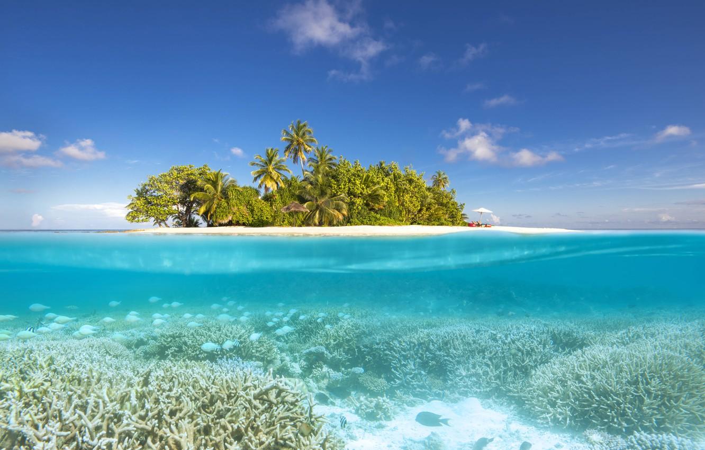 palmy-ostrov-pliazh-laguna-maldivy-okean-maldives-north-ari