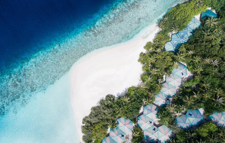 sverkhu-palmy-pliazh-kurort-okean-maldivy-embudu-village-mal
