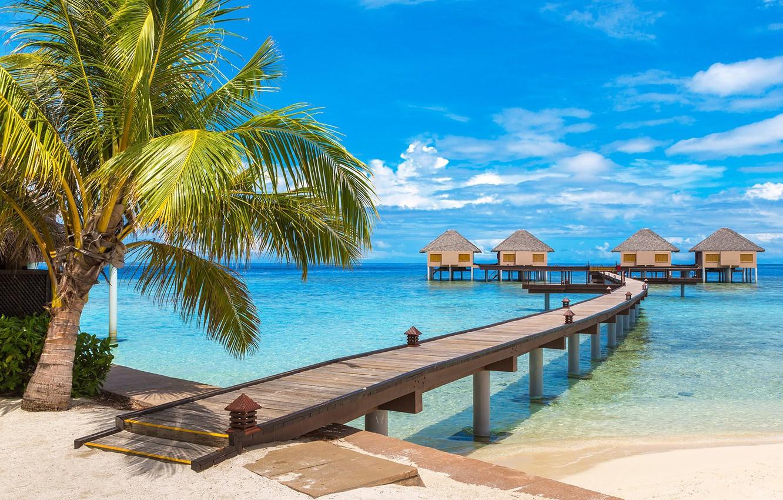 maldivy-more-dorozhka-bungalo-palma